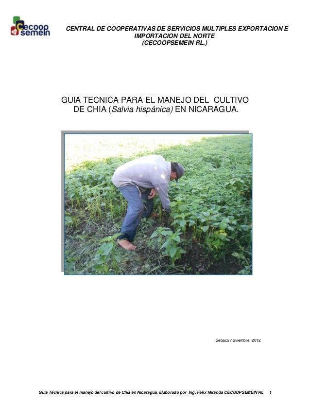 Guía Técnica para el manejo del cultivo de Chía en Nicaragua, Elaborado por Ing. Félix Miranda CECOOPSEMEIN RL 1 CENTRAL D...