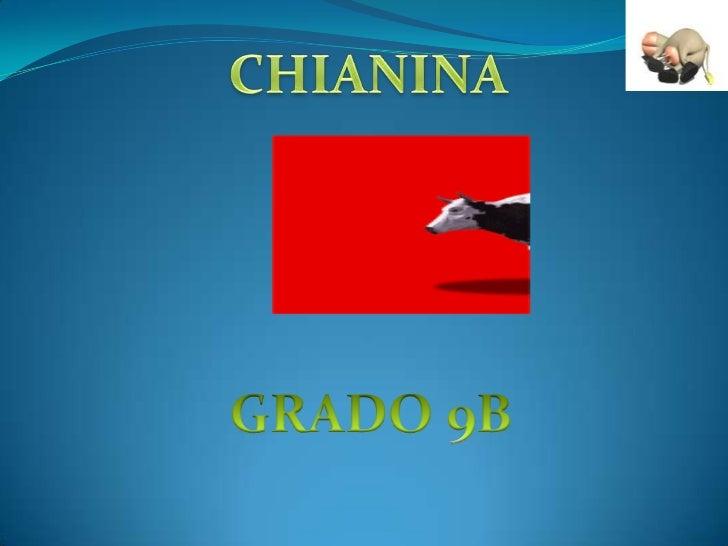 CHIANINA<br />GRADO 9B<br />
