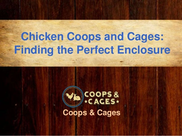 Chicken Coops and Cages: Finding the Perfect Enclosure Coops & Cages