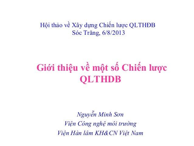 Giới thiệu về một số Chiến lược QLTHDB Hội thảo về Xây dựng Chiến lược QLTHĐB Sóc Trăng, 6/8/2013 Nguyễn Minh Sơn Viện Côn...