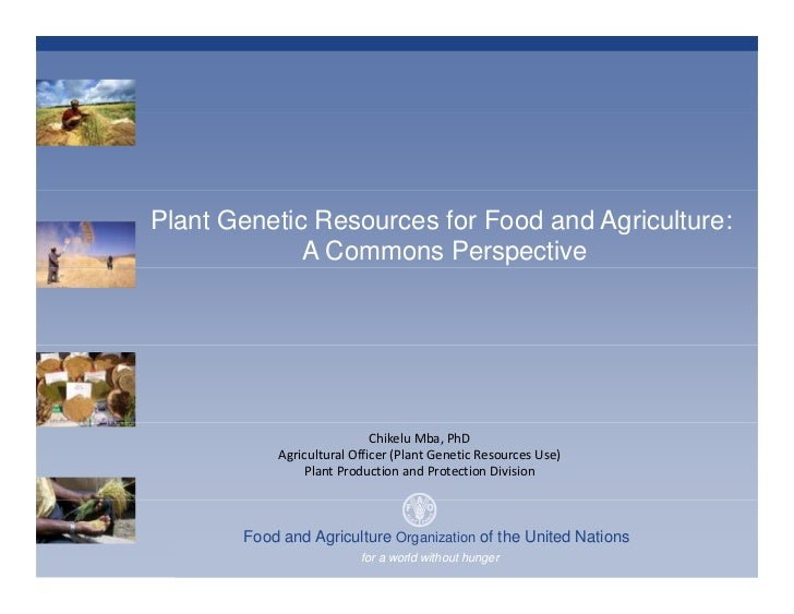 Plant Genetic Resources for Food and Agriculture:              A Commons Perspective                                  Chik...