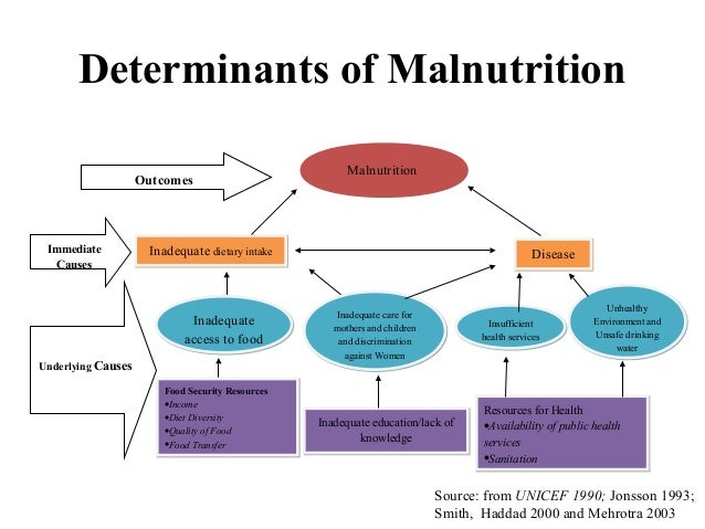 assessment of malnutrition in children under The majority of studies on child nutritional status have described prevalence of malnutrition among under-five children and analyzed socioeconomic, demographic and cultural factors.