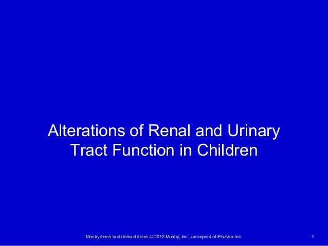 Mosby items and derived items © 2012 Mosby, Inc., an imprint of Elsevier Inc. 1 Alterations of Renal and Urinary Tract Fun...