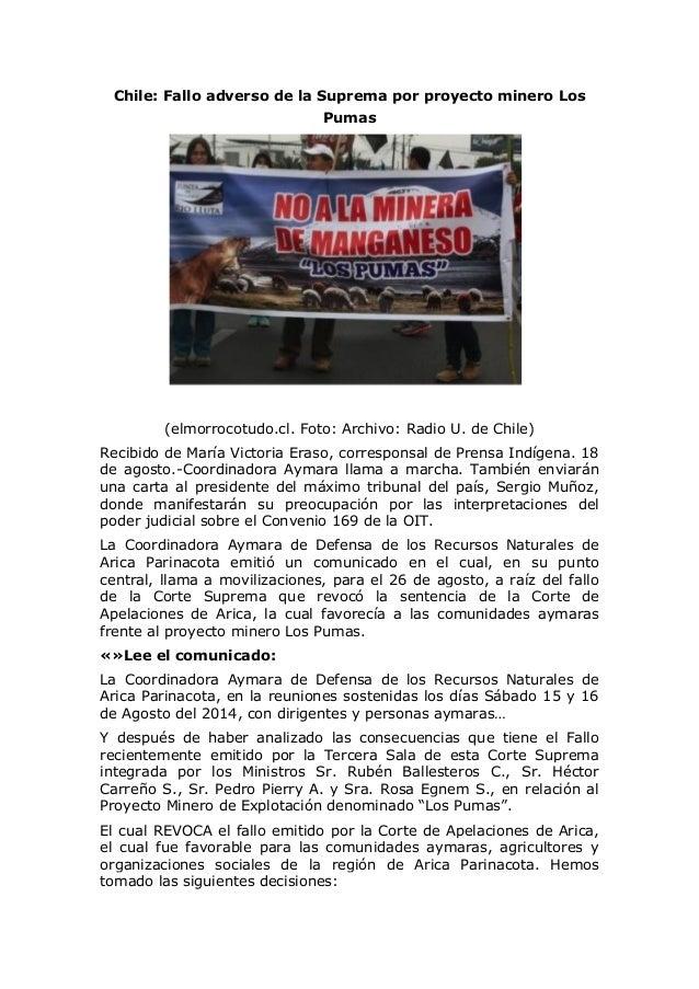 Chile: Fallo adverso de la Suprema por proyecto minero Los Pumas