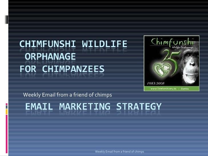 Chimfunshi Wildlife Orphanage Email Strategy