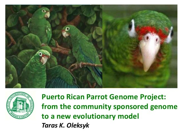 Puerto Rican Parrot Genome Project: from the community sponsored genome to a new evolutionary model Taras K. Oleksyk