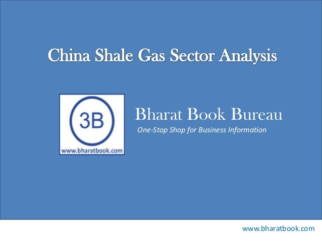 China shale gas sector analysis