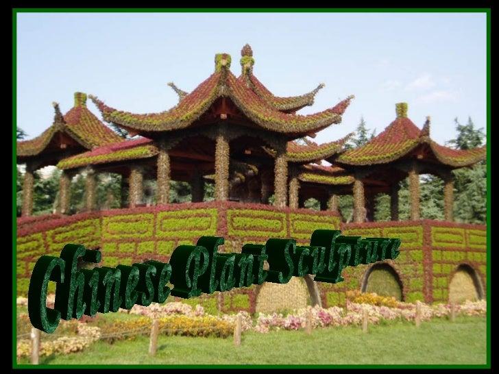 Chineseplantart lau