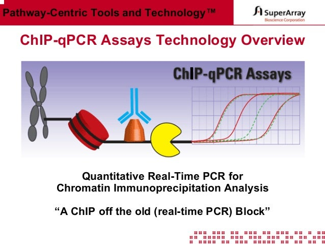 Pathway-Centric Tools and Technology™  ChIP-qPCR Assays Technology Overview  Quantitative Real-Time PCR for Chromatin Immu...