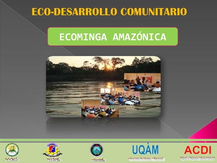 ECO-DESARROLLO COMUNITARIO    ECOMINGA AMAZÓNICA                             1