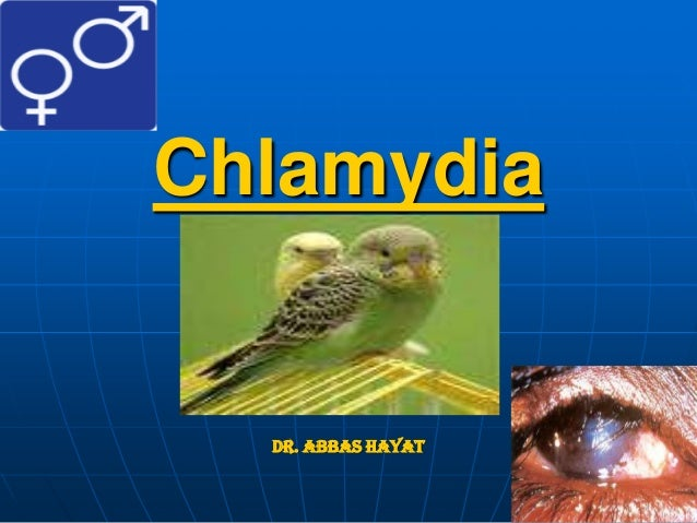 Chlamydia Dr. Abbas Hayat