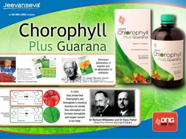 Chlorophyll plus guarana - Presentation