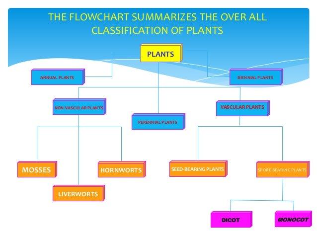 Amazoncom Magills Encyclopedia of Science Plant Life