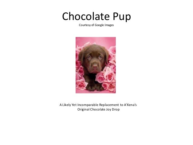 Chocolate Pup Courtesy of Google Images A Likely Yet Incomparable Replacement to A'Kena's Original Chocolate Joy Drop