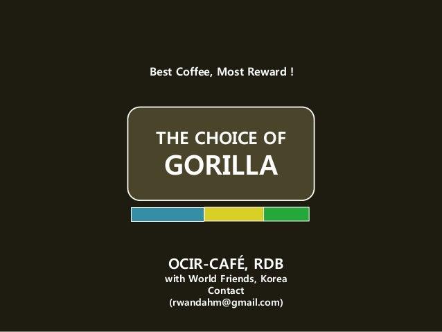THE CHOICE OF GORILLA Best Coffee, Most Reward ! OCIR-CAFÉ, RDB with World Friends, Korea Contact (rwandahm@gmail.com)