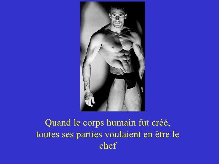 Quand le corps humain fut créé, toutes ses parties voulaient en être le chef