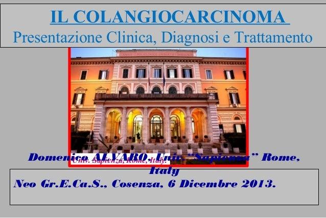 """Univ. Sapienza, Rome, Italy.Domenico ALVARO, Univ.""""Sapienza"""" Rome, Italy Neo Gr.E.Ca.S., Cosenza, 6 Dicembre 2013. IL COLA..."""