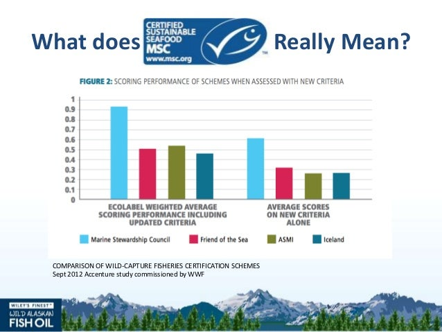 Seafood sustainability why it matters for What does sustainable fish mean