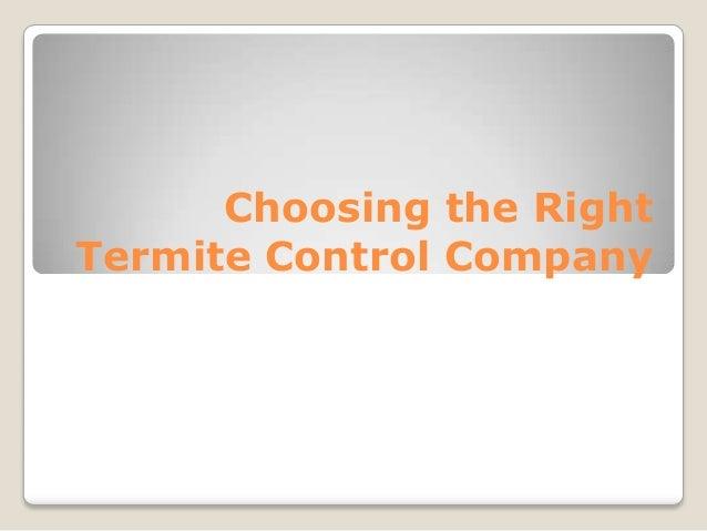 Choosing the Right Termite Control Company