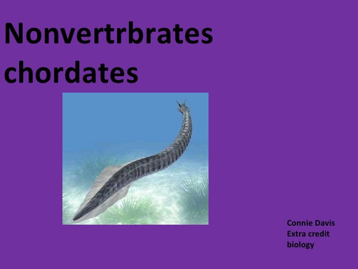 Nonvertrbrates chordates Connie Davis  Extra credit biology