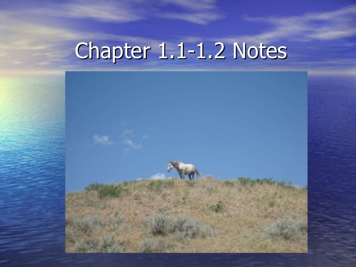 Chapter 1.1-1.2 Notes