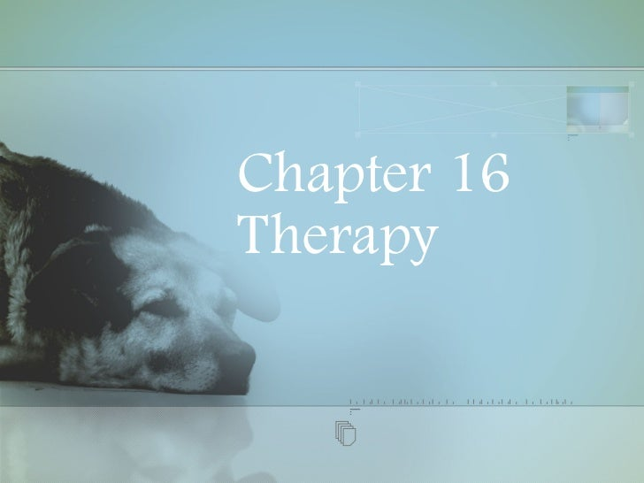 Chapter 16 Therapy