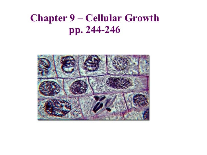 Chapter 9 – Cellular Growth pp. 244-246