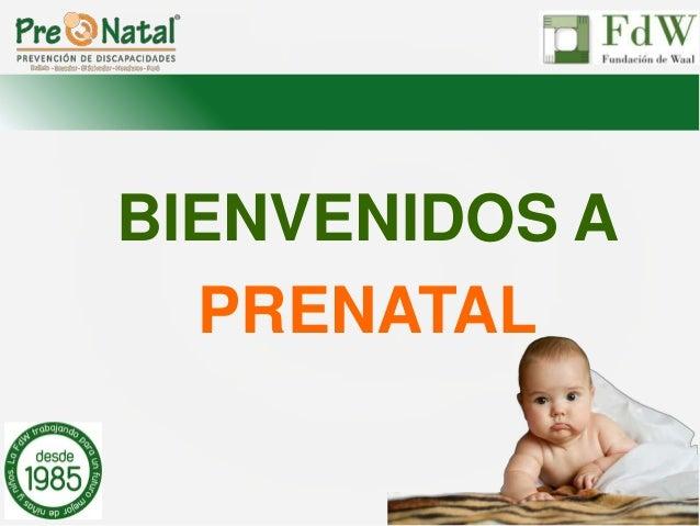 BIENVENIDOS A PRENATAL