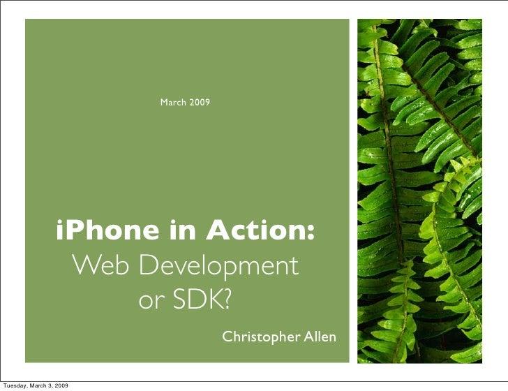 Web or SDK Development
