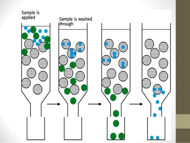 an analysis of gel filtration chromatography a molecule separating technique Analysis of lipoprotein apoproteins by sds-gel filtration column chromatography  apoprotein separation and analysis  sparks and marsh sds-gel chromatography.