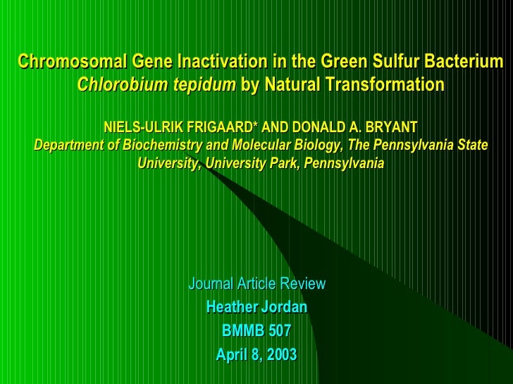Chromosomal Gene Inactivation In The Green Sulfur Bacterium Chlorobium tepidum By Natural Transformation