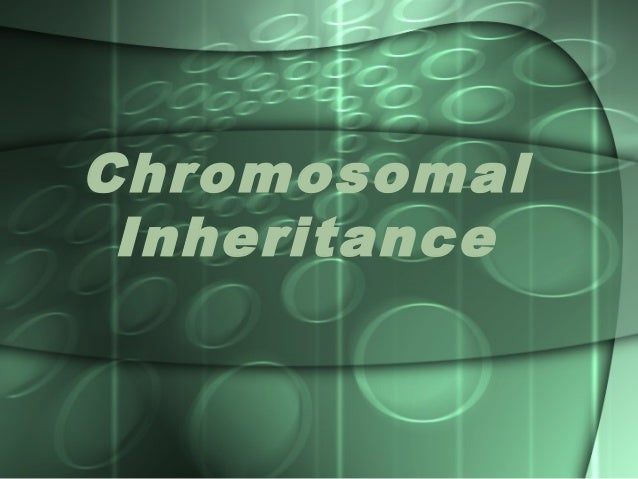 Chromosomalinheritance 100807040928-phpapp02