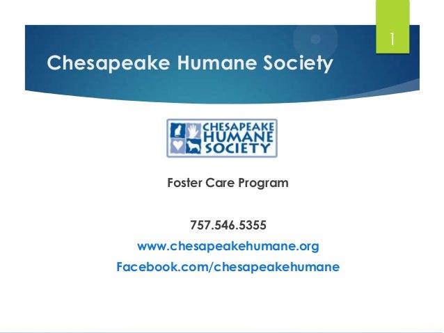 Chesapeake Humane Society Foster Care Program 757.546.5355 www.chesapeakehumane.org Facebook.com/chesapeakehumane 1