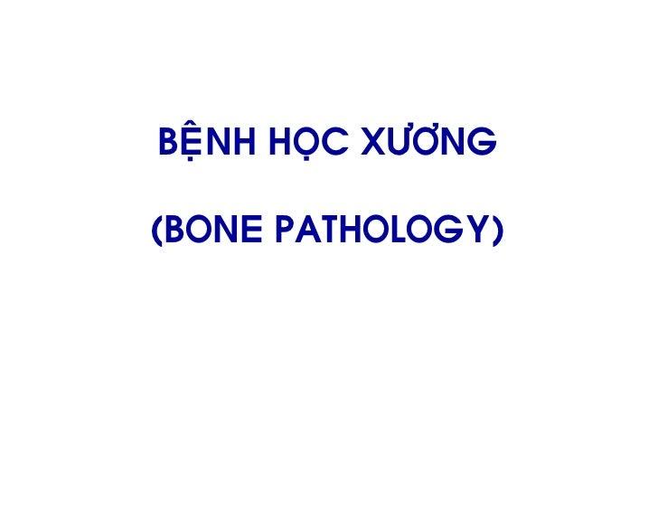 24 bone pathology