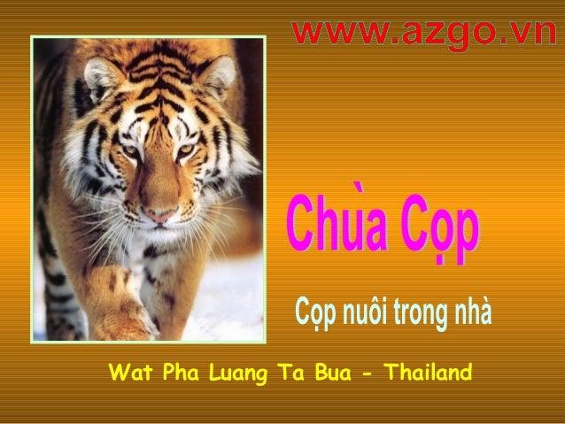 Wat Pha Luang Ta Bua - Thailand