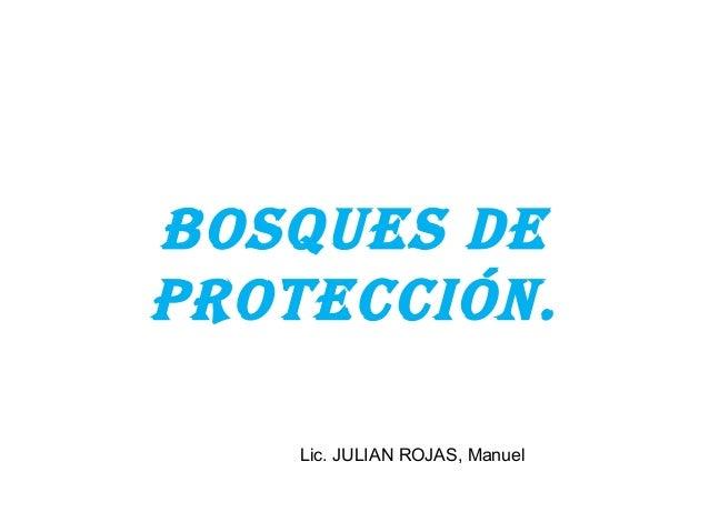 BOSQUES DE  PROTECCIÓN.  Lic. JULIAN ROJAS, Manuel
