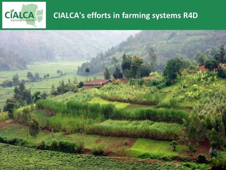 CIALCAs efforts in farming systems R4D