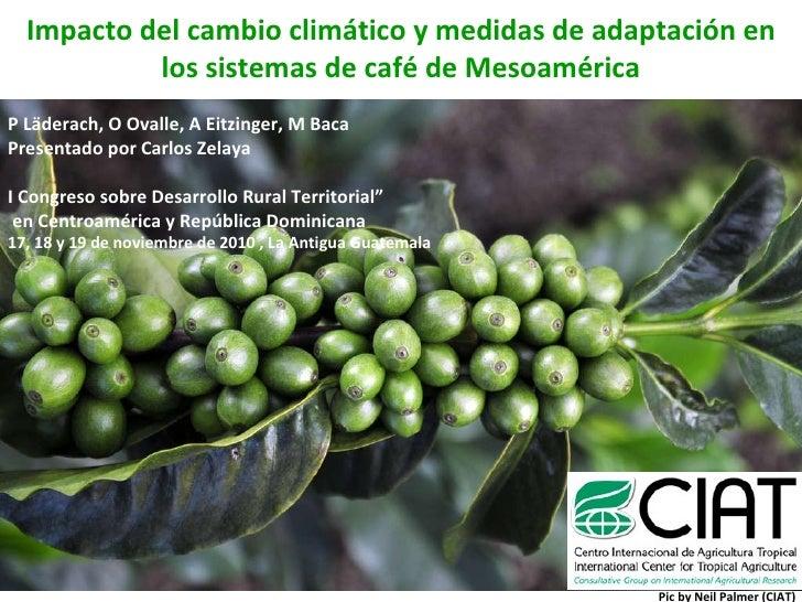 Impacto del cambio climático y medidas de adaptación en los sistemas de café de Mesoamérica P Läderach, O Ovalle, A Eitzin...