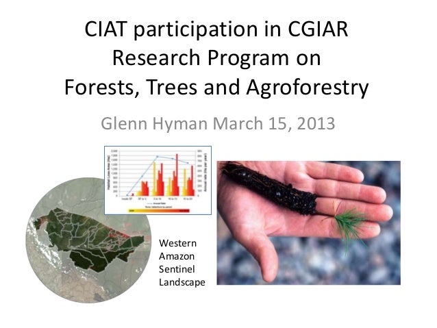 CIAT participation in CGIAR     Research Program onForests, Trees and Agroforestry   Glenn Hyman March 15, 2013         We...