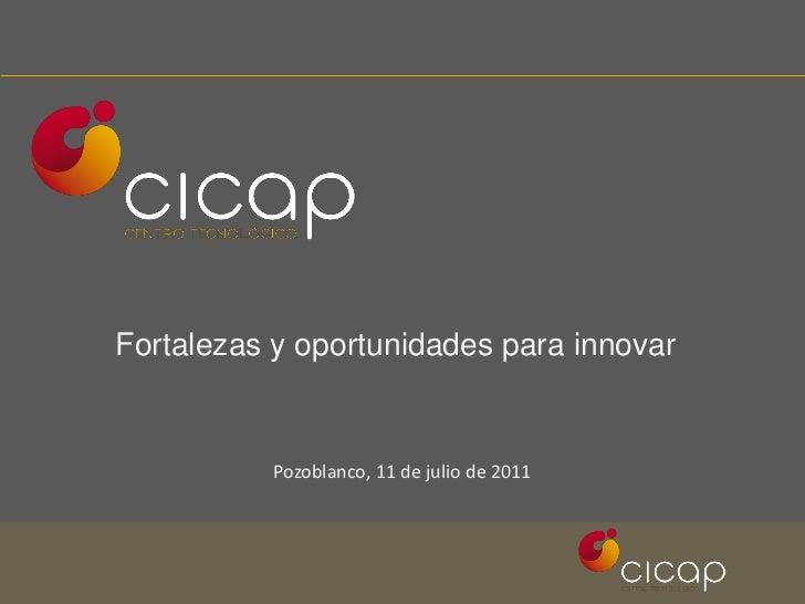 Fortalezas y oportunidades para innovar          Pozoblanco, 11 de julio de 2011