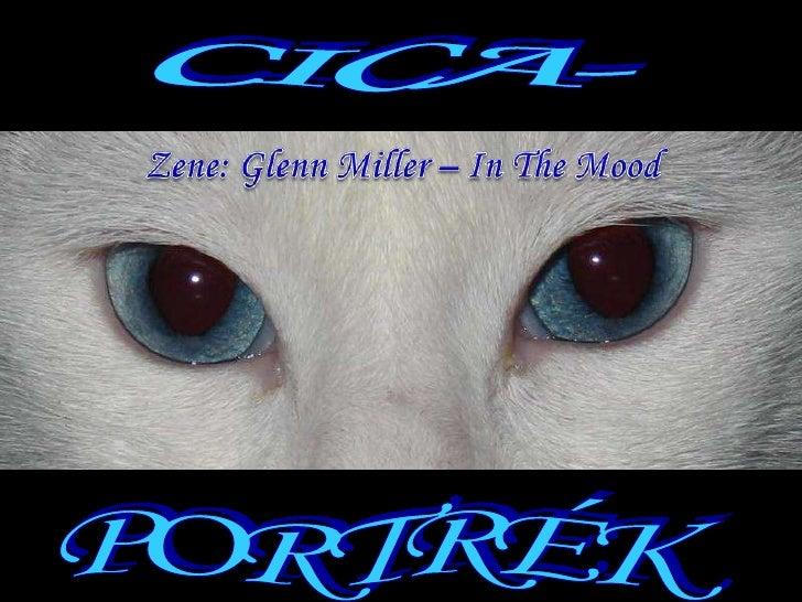 CICA-<br />Zene: Glenn Miller – In The Mood<br />PORTRÉK<br />