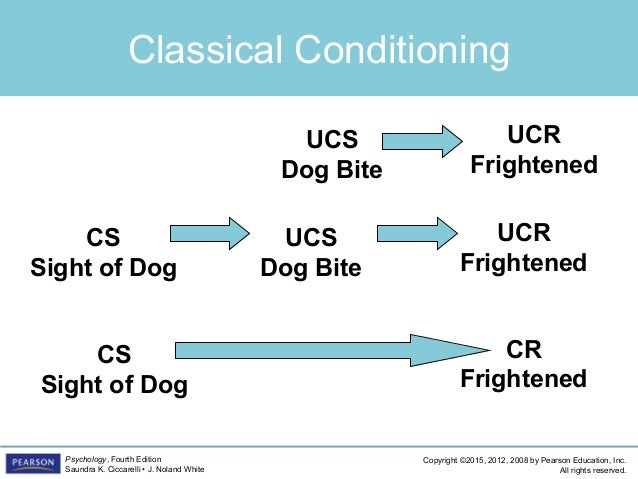 classical conditioning and phobias Operant conditioning of classical and operant conditioning based upon the principles of classical conditioning, it was assumed that phobias develop.