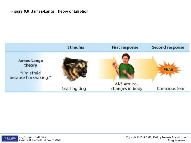 james lange theory Nonverbal behavior and the theory of emotion: the facial feedback hypothesis ross buck university of connecticut james-lange theory is based on darwin's contention, expressed in the expression of the emotions in man and animals, that emo.