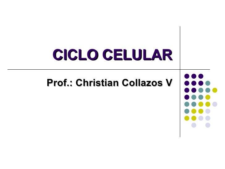 CICLO CELULAR Prof.: Christian Collazos V