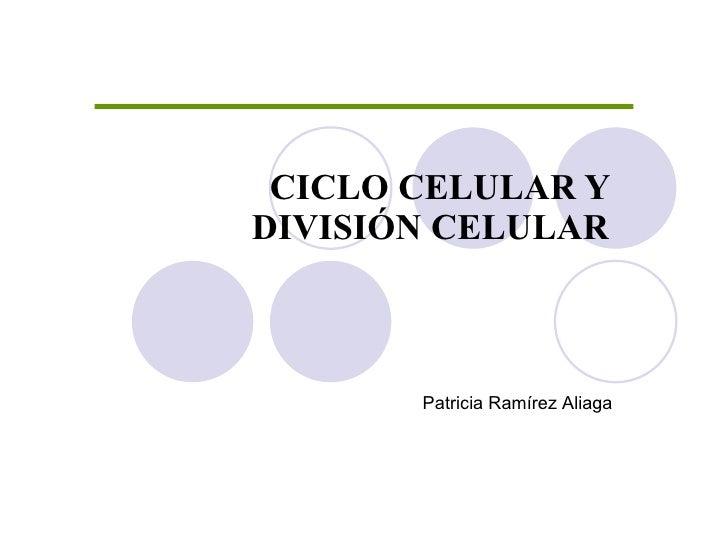 CICLO CELULAR Y DIVISIÓN CELULAR Patricia Ramírez Aliaga