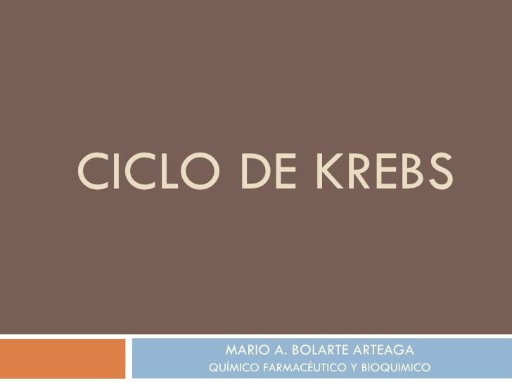 CICLO DE KREBS MARIO A. BOLARTE ARTEAGA QUÍMICO FARMACÉUTICO Y BIOQUIMICO