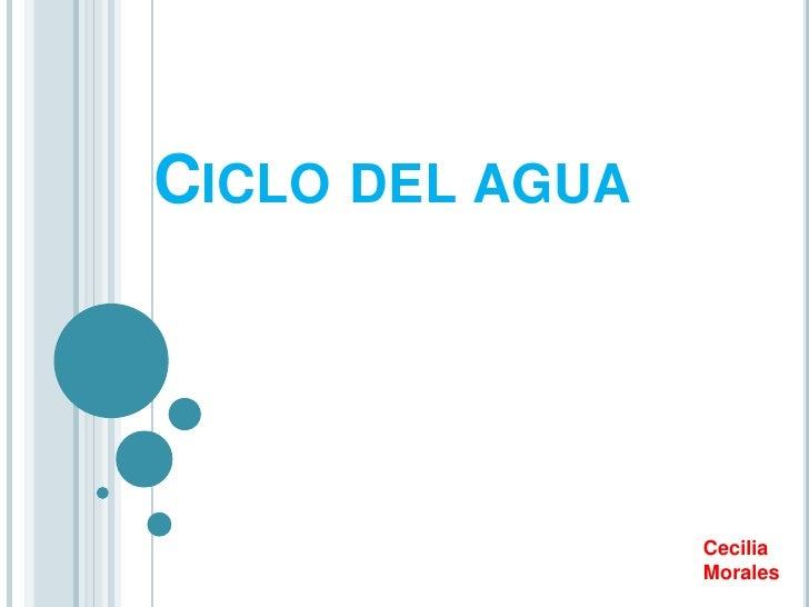 CICLO DEL AGUA                 Cecilia                 Morales