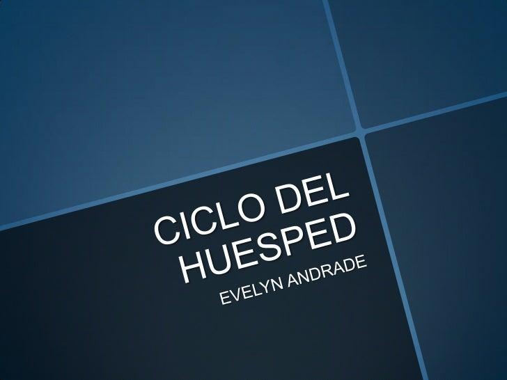 Ciclo del huesped