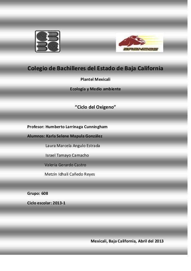 """Colegio de Bachilleres del Estado de Baja CaliforniaPlantel MexicaliEcología y Medio ambiente""""Ciclo del Oxigeno""""Profesor: ..."""