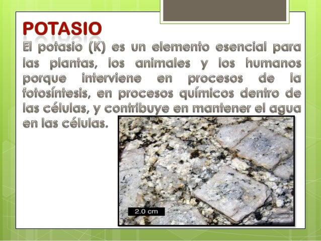 Ciclo del potasio for Potasio para plantas